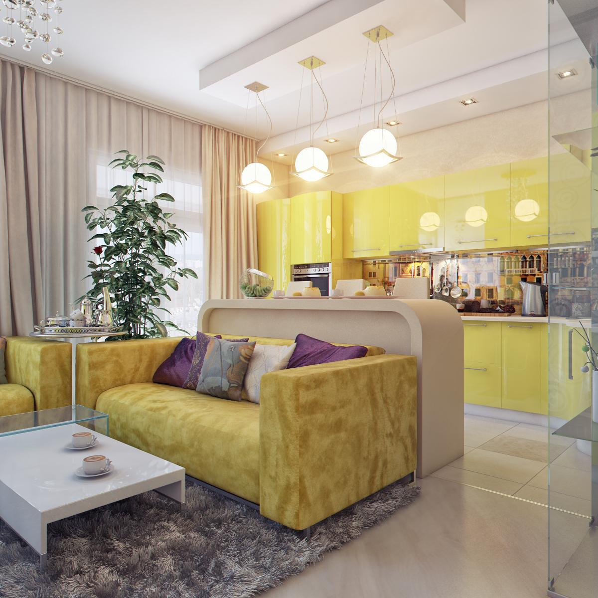 кухня-гостиная 556