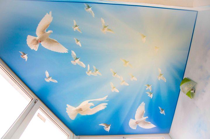 Голуби на натяжном потолке на лоджии