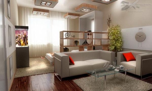 Разделение однокомнатной квартиры на зоны: фото