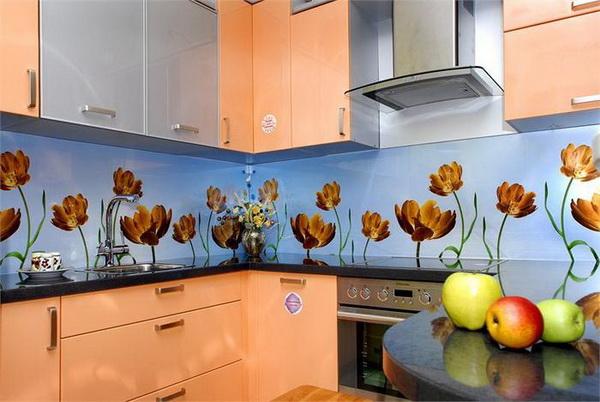 Die Wandplatte für die Küche Glas