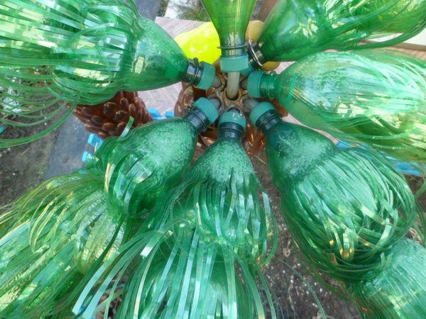 Формирование кроны пальмы