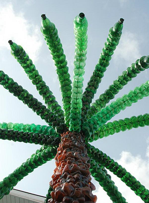 Фото пальмы из бутылки