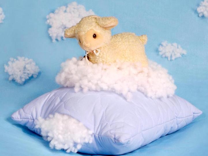 Натуральные наполнители в подушках