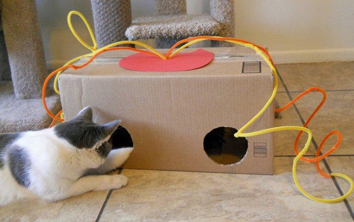 Игрушки для кота своими руками 29