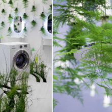 Душ в тропическом лесу: новая концепция ванной комнаты от французского дизайнера