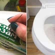 Зубная паста в сливном бачке: оригинальный лайфхак для хозяйки, которая ценит свежесть и  чистоту