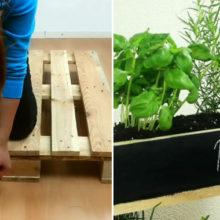 Свежая зелень круглый год: мини-грядки из деревянных поддонов, как лучшее украшение балкона