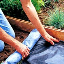 Эффектная садовая дорожка своими руками, которая не требует затрат и выглядит впечатляюще